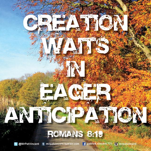 Romans 8:19