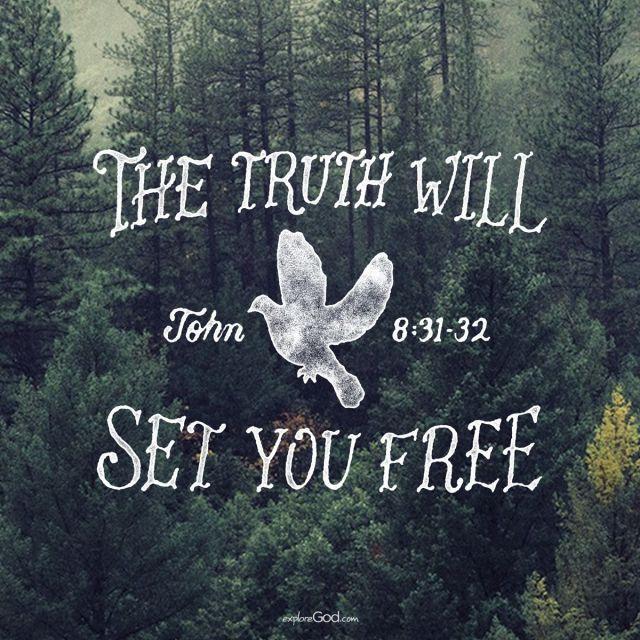 JOHN 8 31