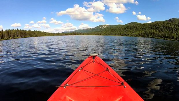 spruce island lake davis wv kayak